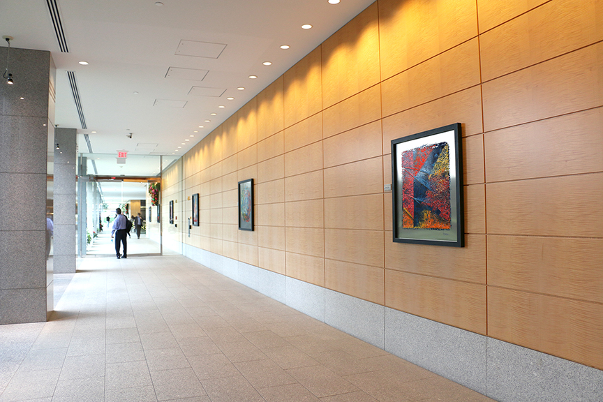 corridor with paintings 1blp